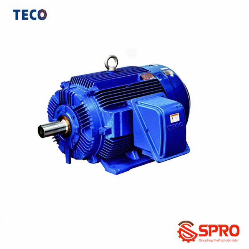 Động cơ điện mô tơ TECO AESV1S-0.75 (TECO0.75) 3 pha công suất 0.75HP